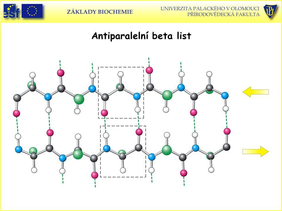 Antiparalelní beta list