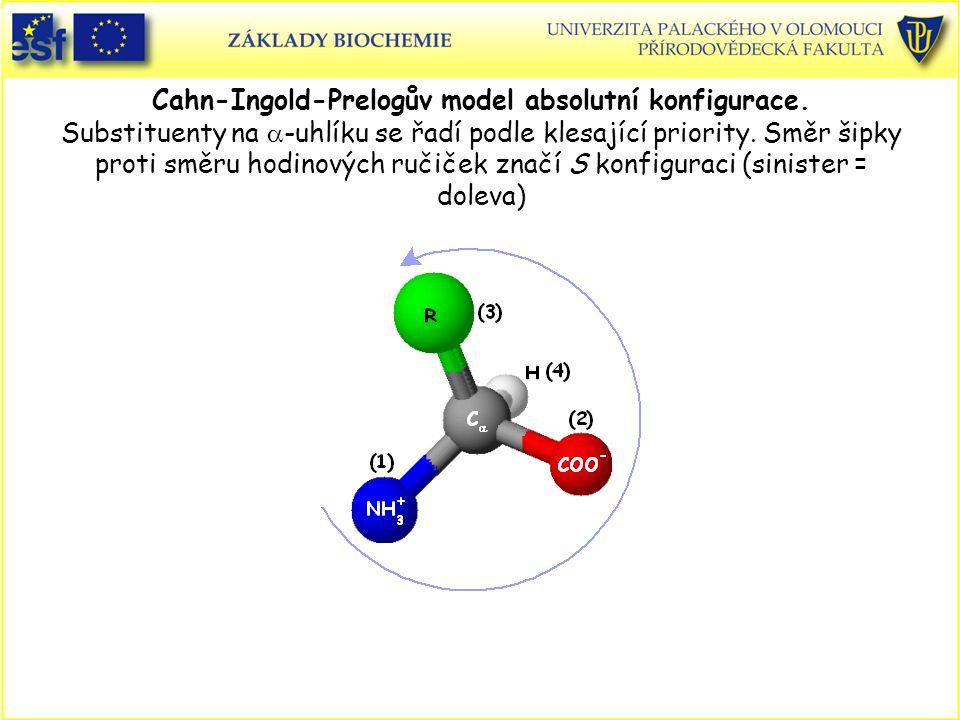 Cahn-Ingold-Prelogův model absolutní konfigurace.