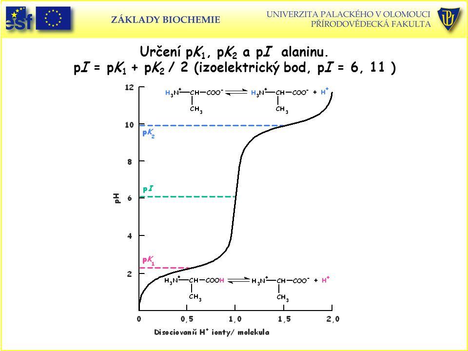 Určení pK 1, pK 2 a pI alaninu. pI = pK 1 + pK 2 / 2 (izoelektrický bod, pI = 6, 11 )