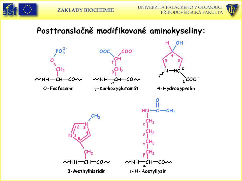 Posttranslačně modifikované aminokyseliny: