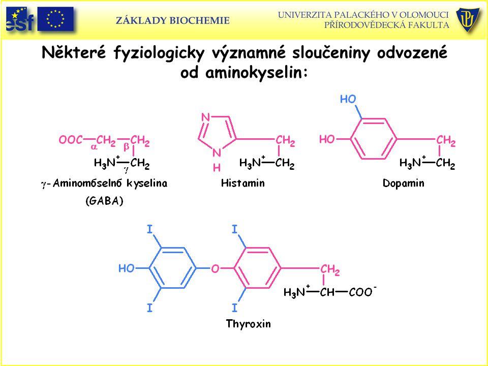 Některé fyziologicky významné sloučeniny odvozené od aminokyselin: