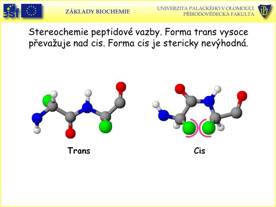 Stereochemie peptidové vazby.Forma trans vysoce převažuje nad cis.