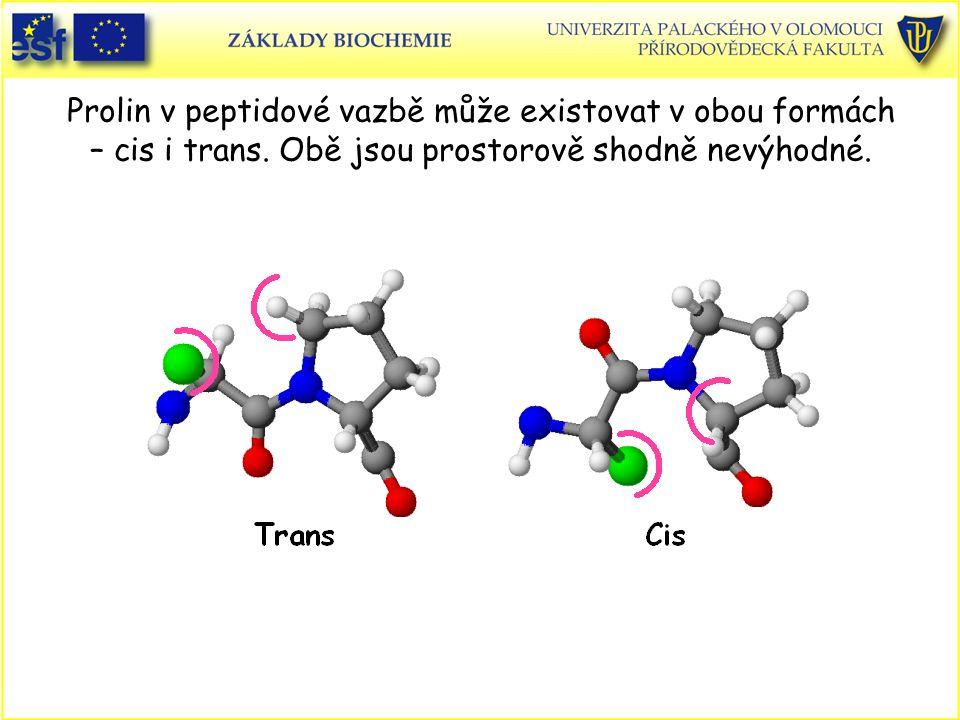 Prolin v peptidové vazbě může existovat v obou formách – cis i trans.