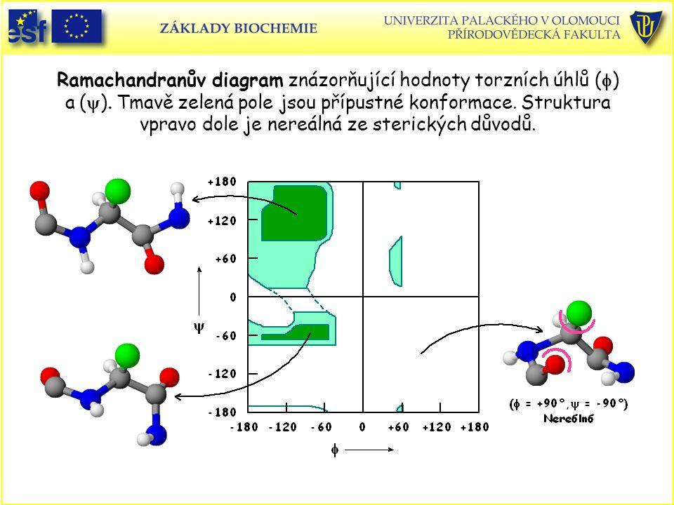Ramachandranův diagram znázorňující hodnoty torzních úhlů (  ) a  (  )  Tmavě zelená pole jsou přípustné konformace.