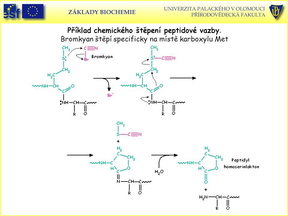Příklad chemického štěpení peptidové vazby. Bromkyan štěpí specificky na místě karboxylu Met
