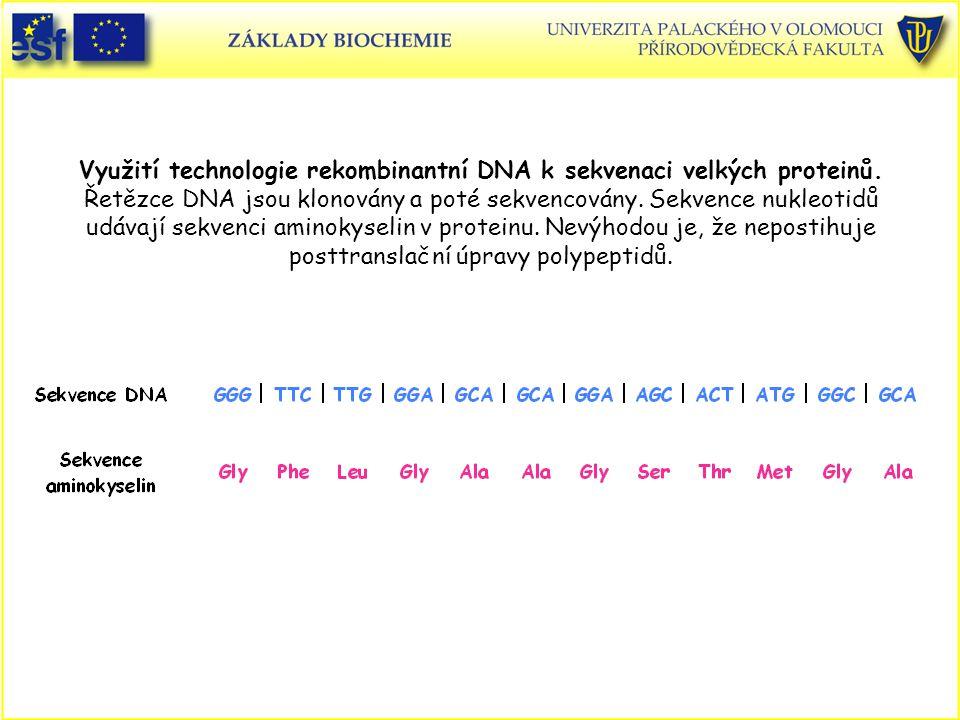 Využití technologie rekombinantní DNA k sekvenaci velkých proteinů.