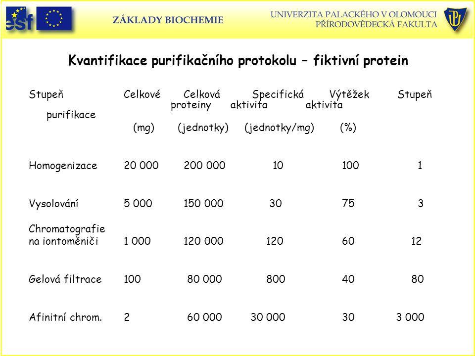 Stupeň Celkové Celková Specifická Výtěžek Stupeň proteiny aktivita aktivita purifikace (mg) (jednotky) (jednotky/mg) (%) Homogenizace 20 000 200 000 10 100 1 Vysolování 5 000 150 000 30 75 3 Chromatografie na iontoměniči 1 000 120 000120 60 12 Gelová filtrace 100 80 000800 40 80 Afinitní chrom.2 60 000 30 000 30 3 000 Kvantifikace purifikačního protokolu – fiktivní protein
