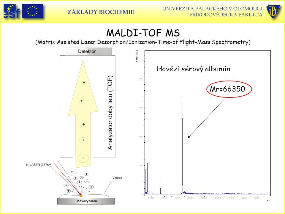 MALDI-TOF MS (Matrix Assisted Laser Desorption/Ionization-Time-of Flight-Mass Spectrometry) Mr=66350 Hovězí sérový albumin