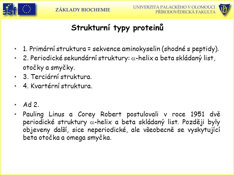 Strukturní typy proteinů 1.Primární struktura = sekvence aminokyselin (shodné s peptidy).