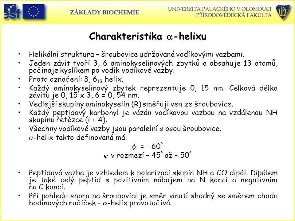 Charakteristika  -helixu Helikální struktura – šroubovice udržovaná vodíkovými vazbami.