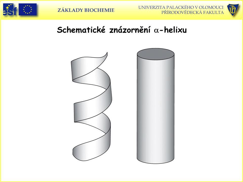 Schematické znázornění  -helixu