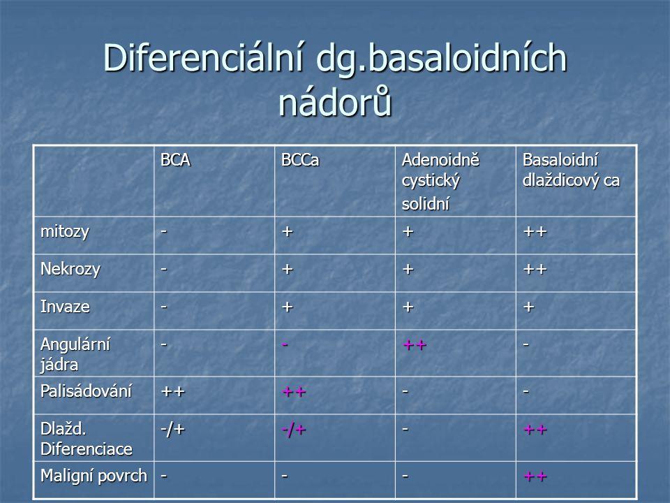 Diferenciální dg.basaloidních nádorů BCABCCa Adenoidně cystický solidní Basaloidní dlaždicový ca mitozy-++++ Nekrozy-++++ Invaze-+++ Angulární jádra -