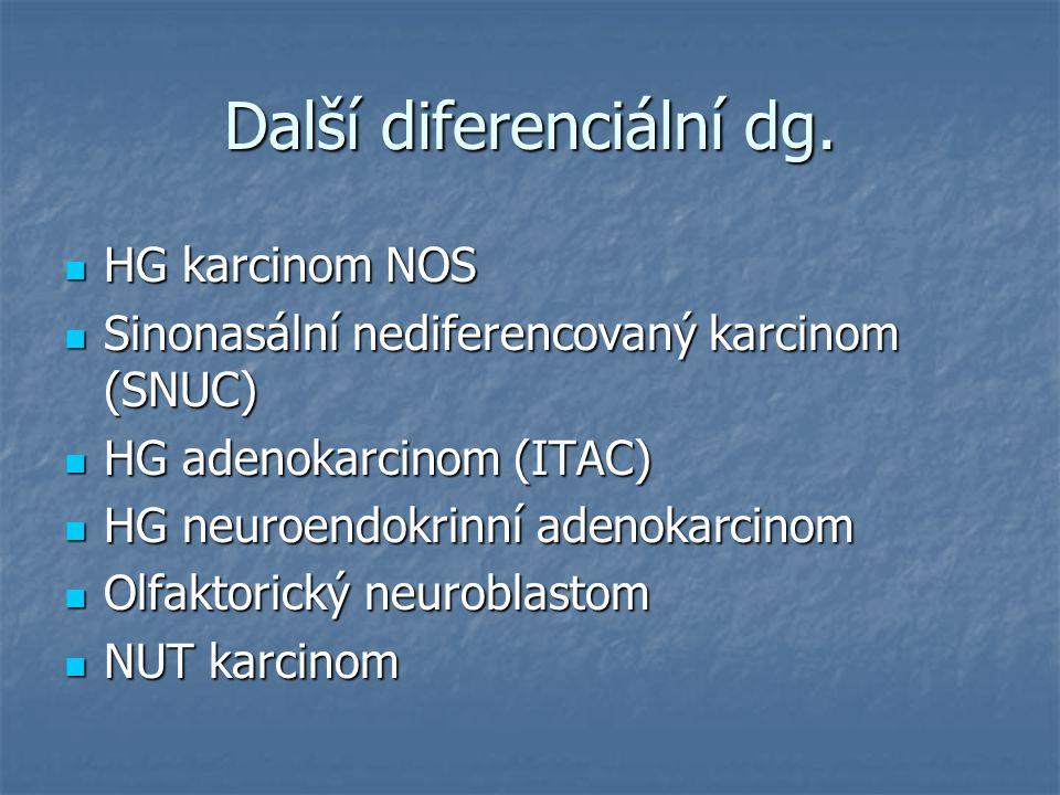 Další diferenciální dg. HG karcinom NOS HG karcinom NOS Sinonasální nediferencovaný karcinom (SNUC) Sinonasální nediferencovaný karcinom (SNUC) HG ade
