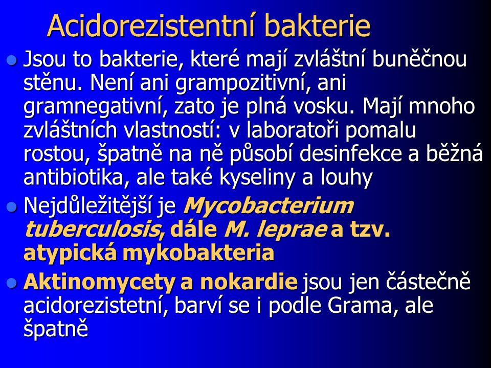 Acidorezistentní bakterie Jsou to bakterie, které mají zvláštní buněčnou stěnu. Není ani grampozitivní, ani gramnegativní, zato je plná vosku. Mají mn