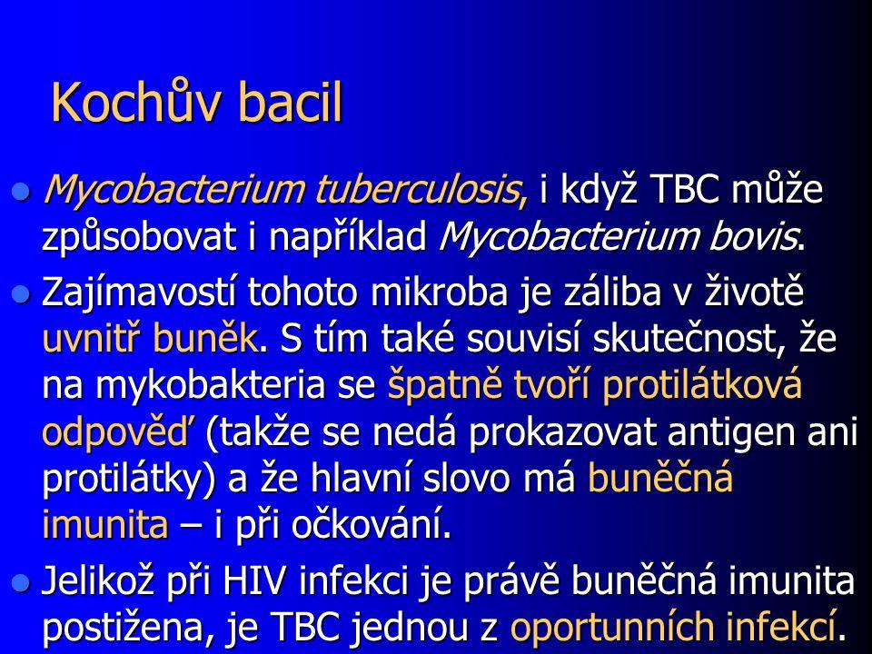 Kochův bacil Mycobacterium tuberculosis, i když TBC může způsobovat i například Mycobacterium bovis. Mycobacterium tuberculosis, i když TBC může způso