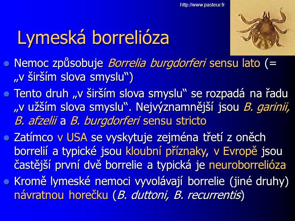 "Lymeská borrelióza Nemoc způsobuje Borrelia burgdorferi sensu lato (= ""v širším slova smyslu"") Nemoc způsobuje Borrelia burgdorferi sensu lato (= ""v š"