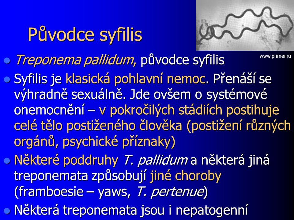 Původce syfilis Treponema pallidum, původce syfilis Treponema pallidum, původce syfilis Syfilis je klasická pohlavní nemoc. Přenáší se výhradně sexuál