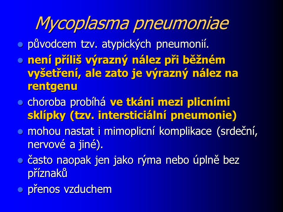 Mycoplasma pneumoniae původcem tzv. atypických pneumonií. původcem tzv. atypických pneumonií. není příliš výrazný nález při běžném vyšetření, ale zato