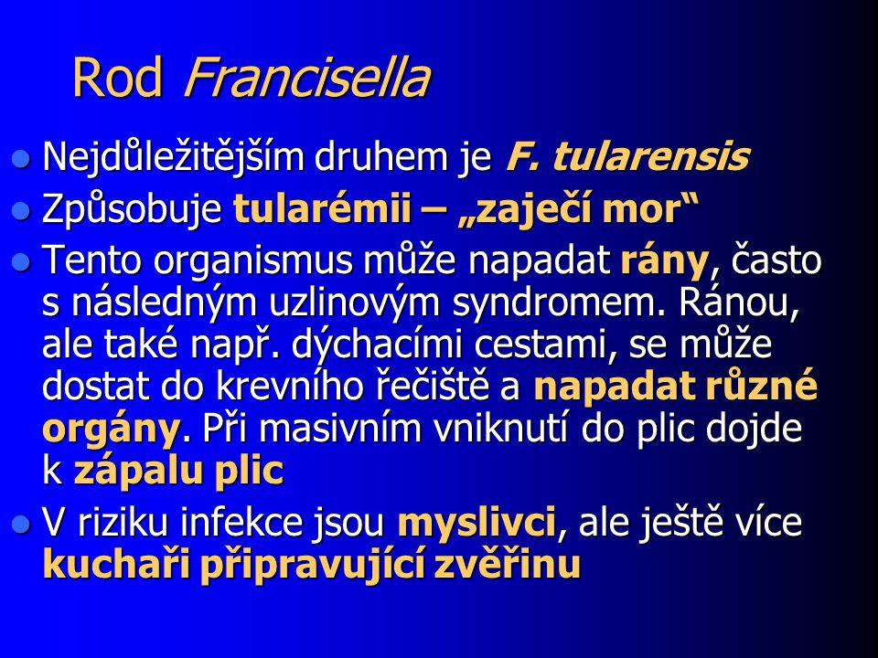 """Rod Francisella Nejdůležitějším druhem je F. tularensis Nejdůležitějším druhem je F. tularensis Způsobuje tularémii – """"zaječí mor"""" Způsobuje tularémii"""