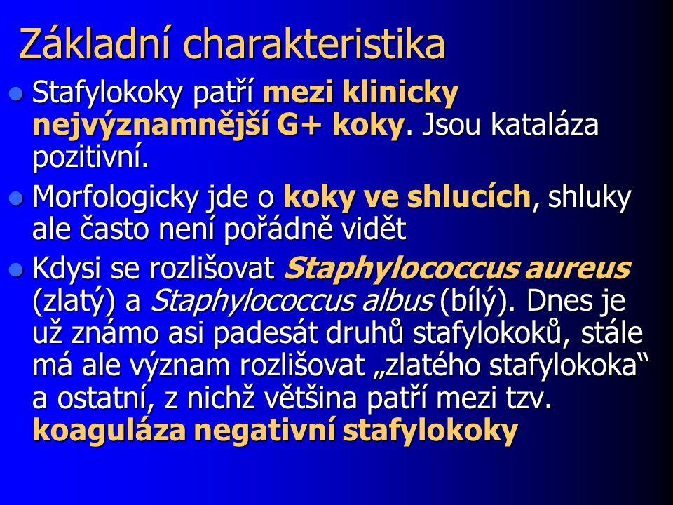 Základní charakteristika Stafylokoky patří mezi klinicky nejvýznamnější G+ koky. Jsou kataláza pozitivní. Stafylokoky patří mezi klinicky nejvýznamněj