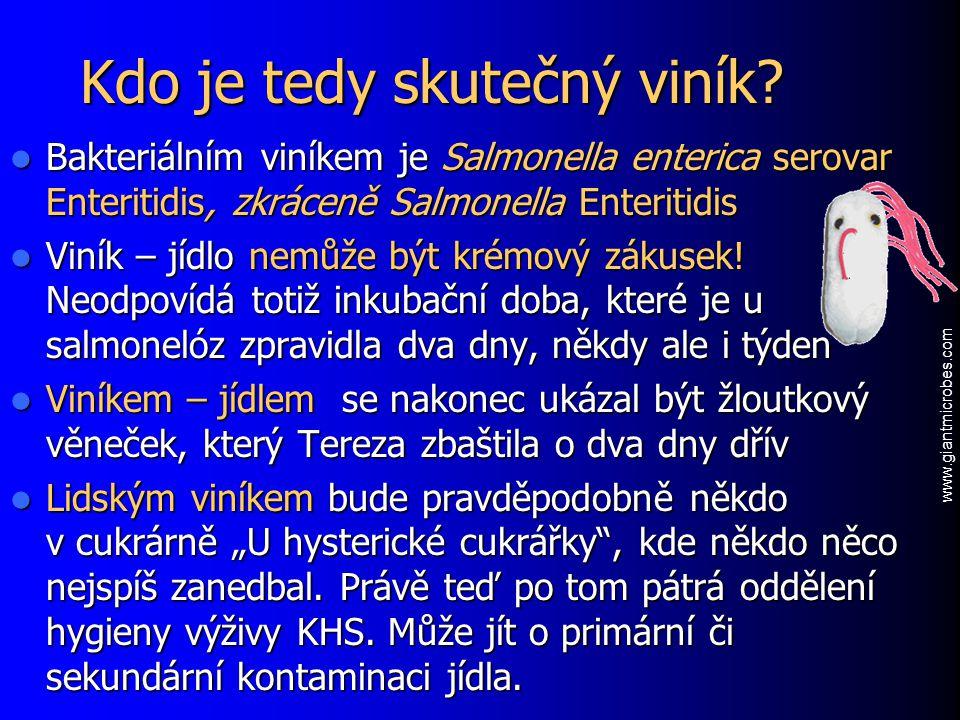 Kdo je tedy skutečný viník? Bakteriálním viníkem je Salmonella enterica serovar Enteritidis, zkráceně Salmonella Enteritidis Bakteriálním viníkem je S
