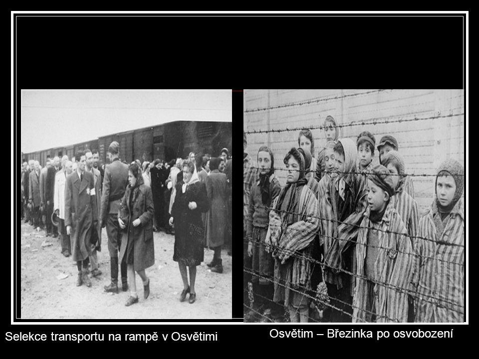 Selekce transportu na rampě v Osvětimi Osvětim – Březinka po osvobození