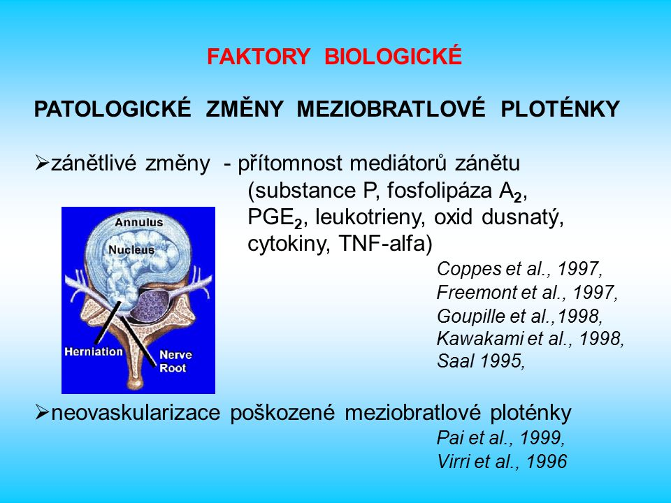 PATOLOGICKÉ ZMĚNY MEZIOBRATLOVÉ PLOTÉNKY - pokračování -  změny nervového zásobení mechanoreceptory v zevních vrstvách anulus fibrosus - význam pro nocicepci a reflexní změny v daném úseku Roberts et al., 1995 u pacientů s chronickou LBP zjištěna nervová vlákna až ve vnitřní třetině anulus fibrosus a dokonce i u části z nich v nucleus pulposus Freemont et al., 1997 senzitivní i autonomní nervová zakončení v poškozené meziobratlové ploténce Coppes et al., 1997, Palmgren et al., 1996