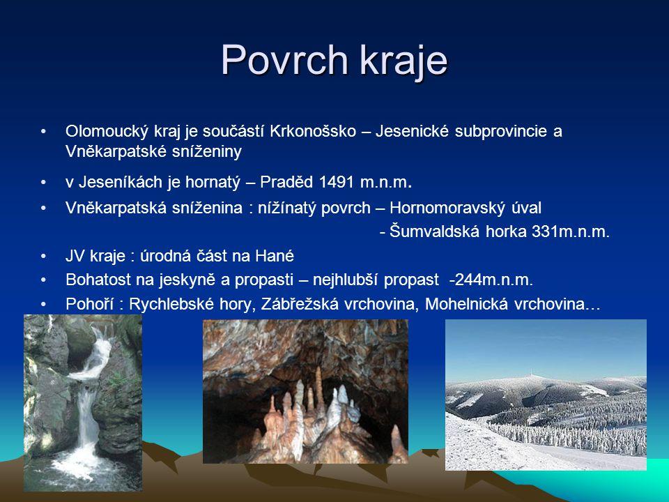 Podnebí, srážky  Mírné se střídáním 4 ročních dob  Na Moravě převládá kontinentální podnebí východní Evropy  Průměrná teplota je 7 stupňů  Průměrný počet srážek je 550mm  Na horách kolem -3 až -6 stupňů a v nížinách asi 14 až 16 stupňů