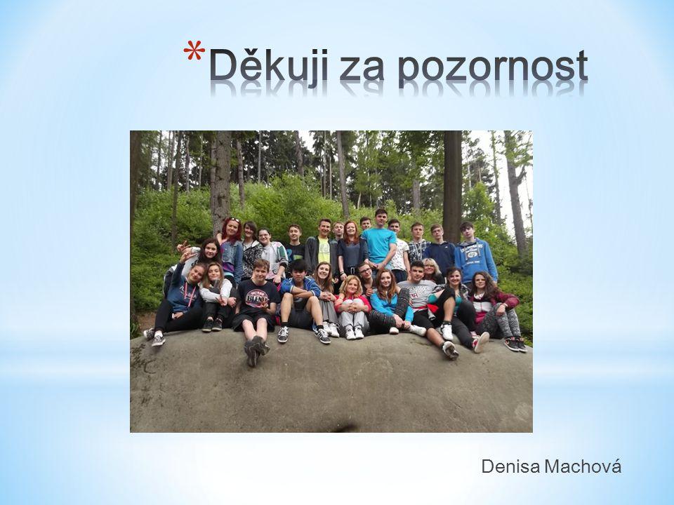 Denisa Machová