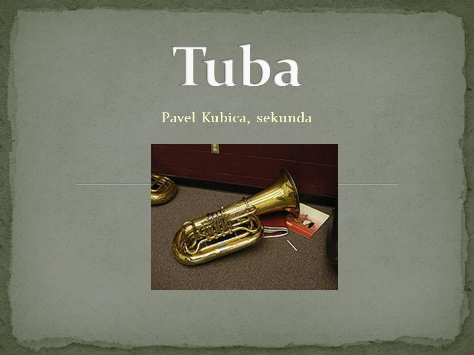  Tuba je basový žesťový dechový nástroj  V kvůli její značné hmotnosti se na Tubu hraje v sedě  Žesťový nástroj (někdy též plechový nástroj, nebo též hovorově jen žestě) je dechový hudební nástroj, ve kterém tón vzniká rozechvěním sloupce vzduchu pomocí rtů hráče  Na nástroj se nasazuje nátrubek.
