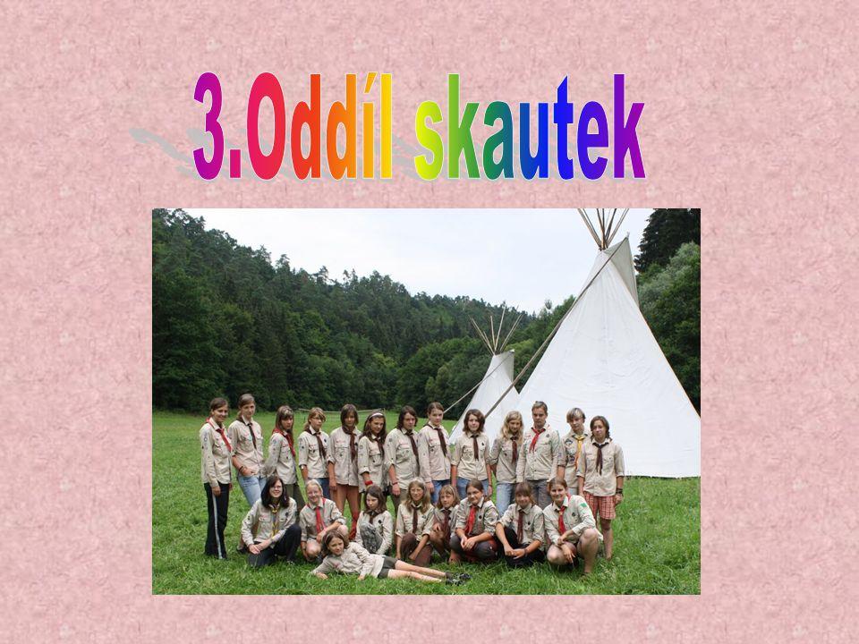 v oddíle je nás 16 dětí a 7 vedoucích scházíme se první a poslední pátek v měsíci v 16:00 – 18:00 občas máme i nějakou tu výpravu máme 3 družiny naše stránky jsou http://3oddil.dobrodruh.net/ http://3oddil.dobrodruh.net/ a užíváme si hodně srandy