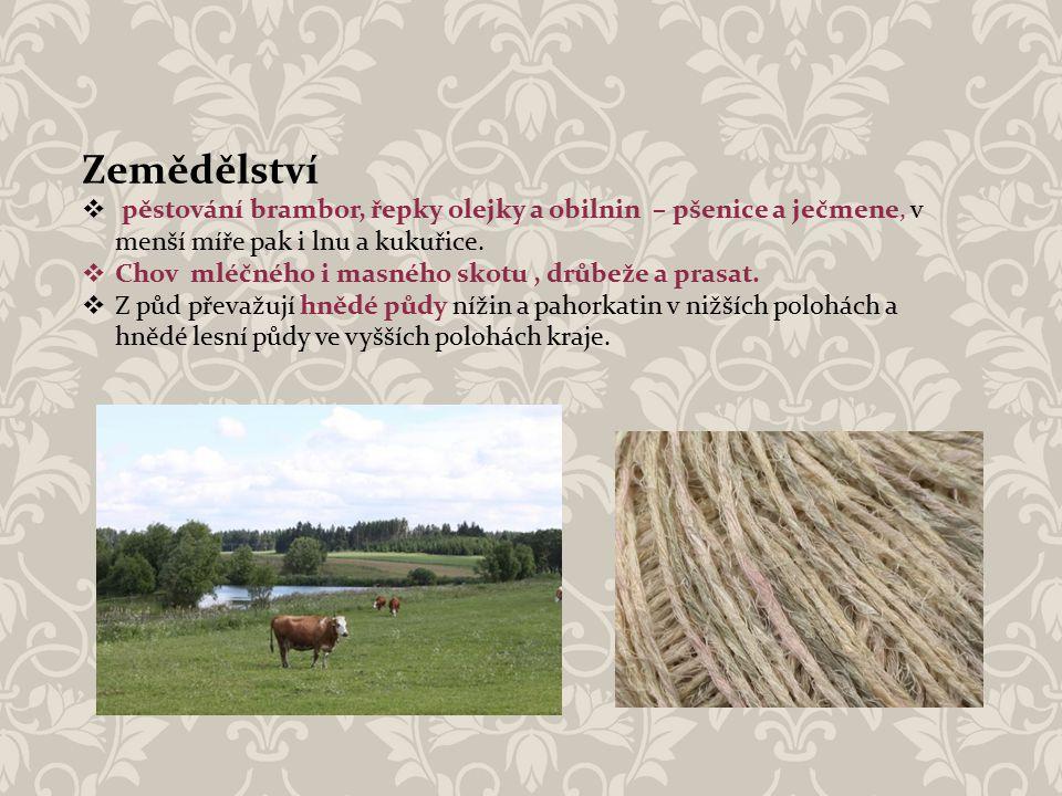 Zemědělství  pěstování brambor, řepky olejky a obilnin – pšenice a ječmene, v menší míře pak i lnu a kukuřice.  Chov mléčného i masného skotu, drůbe