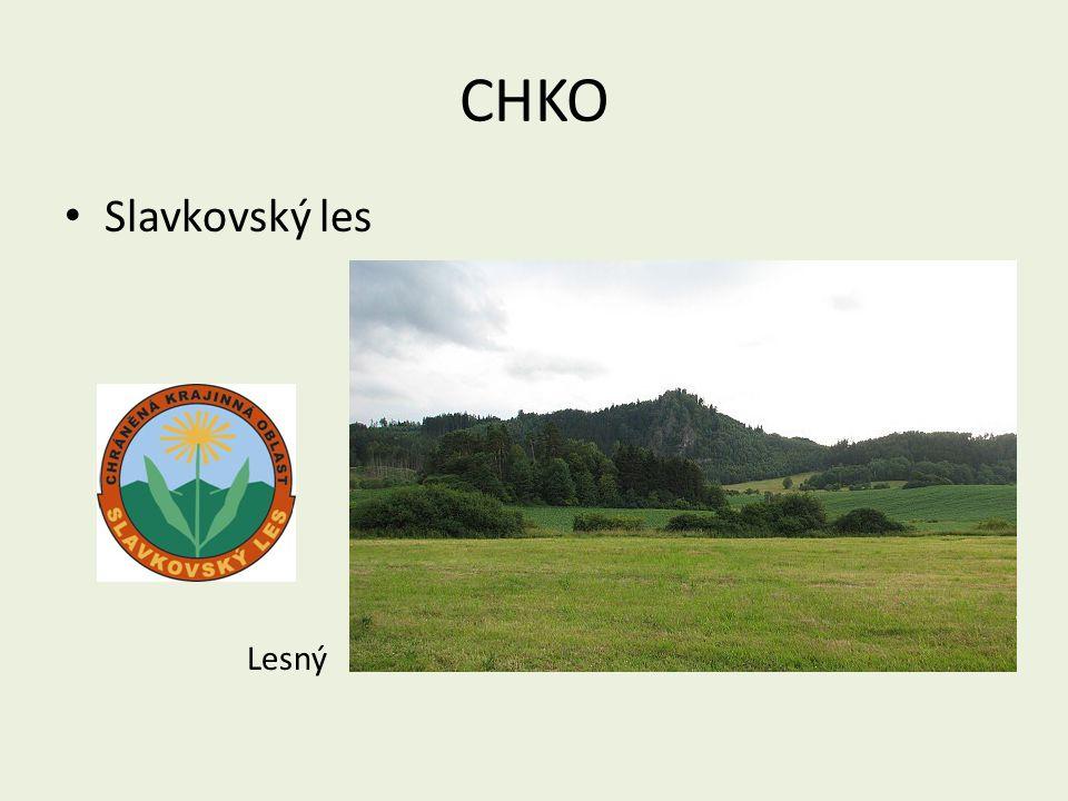 CHKO Slavkovský les Lesný