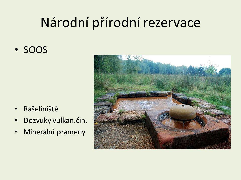 Národní přírodní rezervace SOOS Rašeliniště Dozvuky vulkan.čin. Minerální prameny