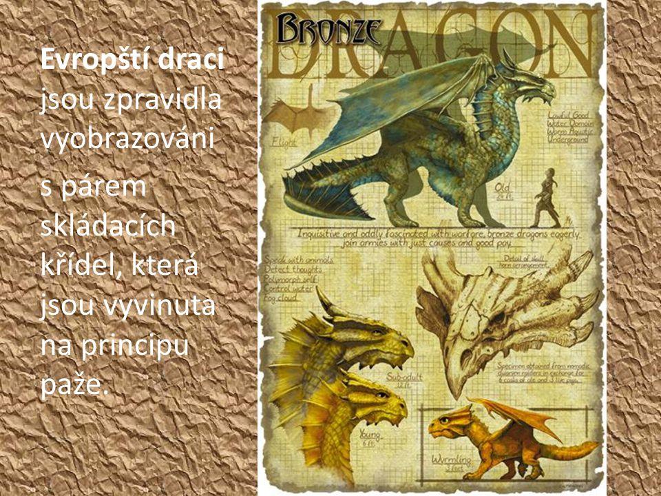 Evropští draci jsou zpravidla vyobrazováni s párem skládacích křídel, která jsou vyvinuta na principu paže.
