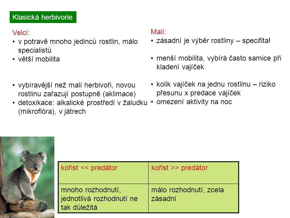 Klasická herbivorie Velcí: v potravě mnoho jedinců rostlin, málo specialistů větší mobilita vybíravější než malí herbivoři, novou rostlinu zařazují postupně (aklimace) detoxikace: alkalické prostředí v žaludku (mikroflóra), v játrech Malí: zásadní je výběr rostliny – specifita.