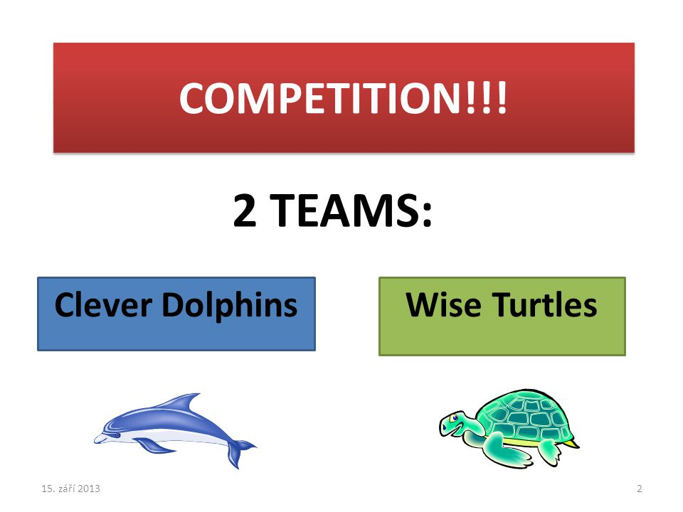COMPETITION!!! 2 TEAMS: Clever DolphinsWise Turtles 15. září 20132