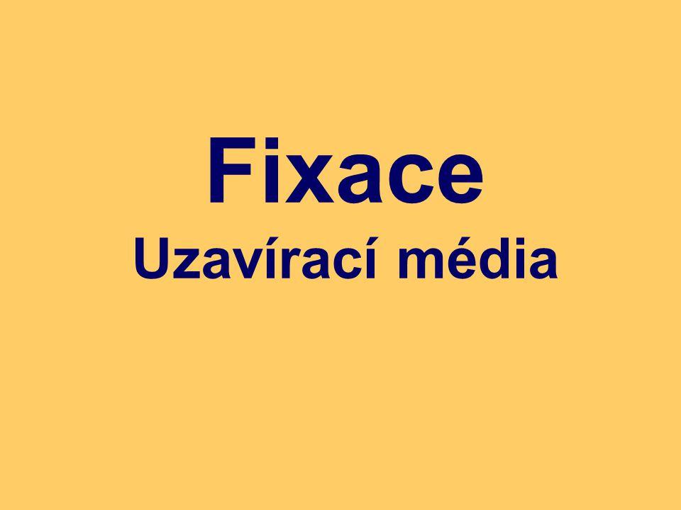 Fixace Uzavírací média