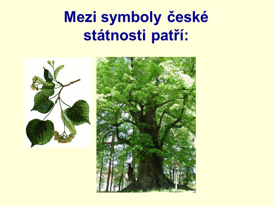 Mezi symboly české státnosti patří: