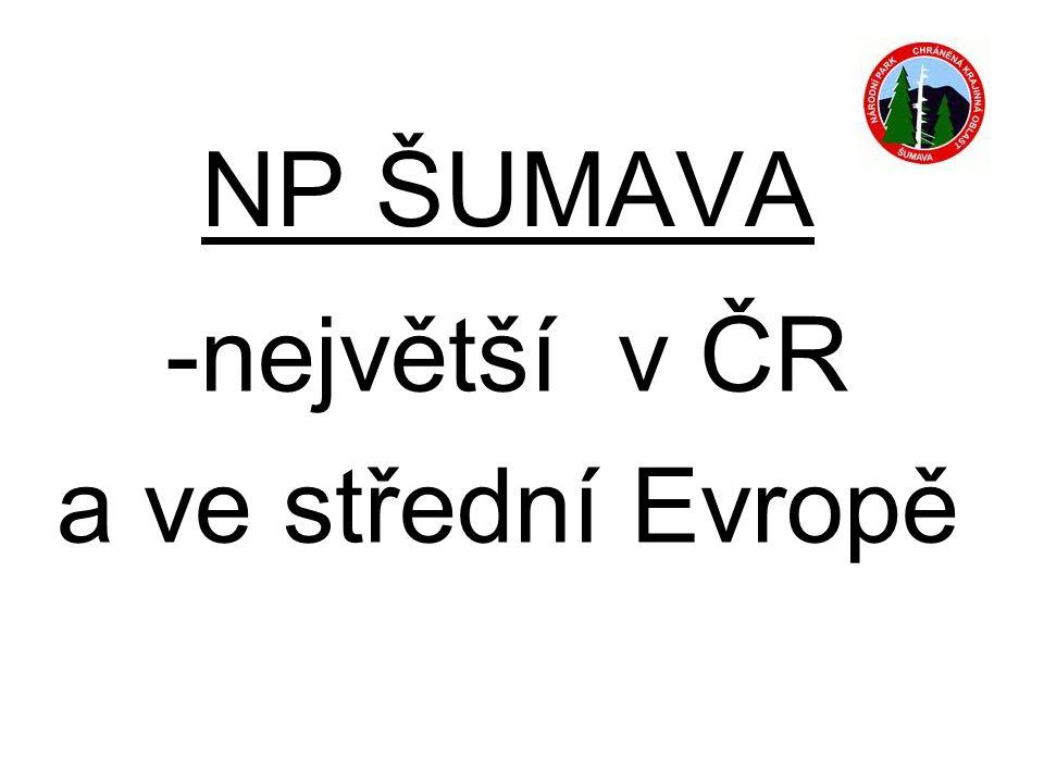 NP ŠUMAVA -největší v ČR a ve střední Evropě