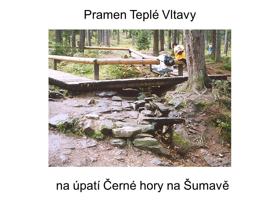 Pramen Teplé Vltavy na úpatí Černé hory na Šumavě