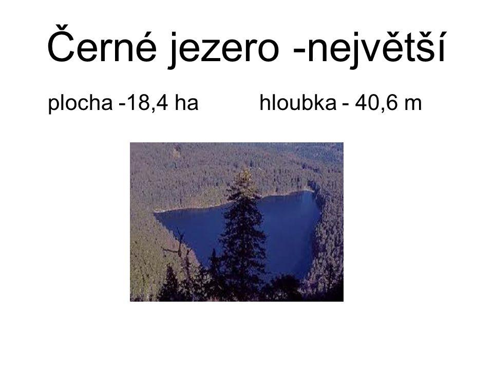 Černé jezero -největší plocha -18,4 ha hloubka - 40,6 m