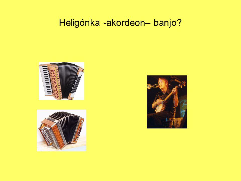 Heligónka -akordeon– banjo?