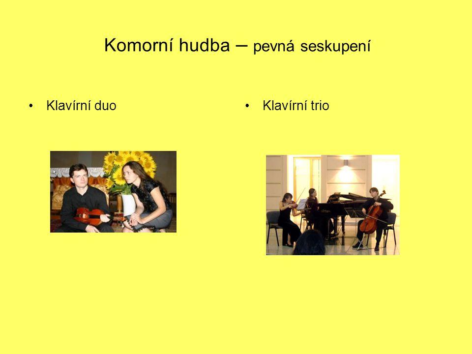 Komorní hudba – pevná seskupení Klavírní duoKlavírní trio