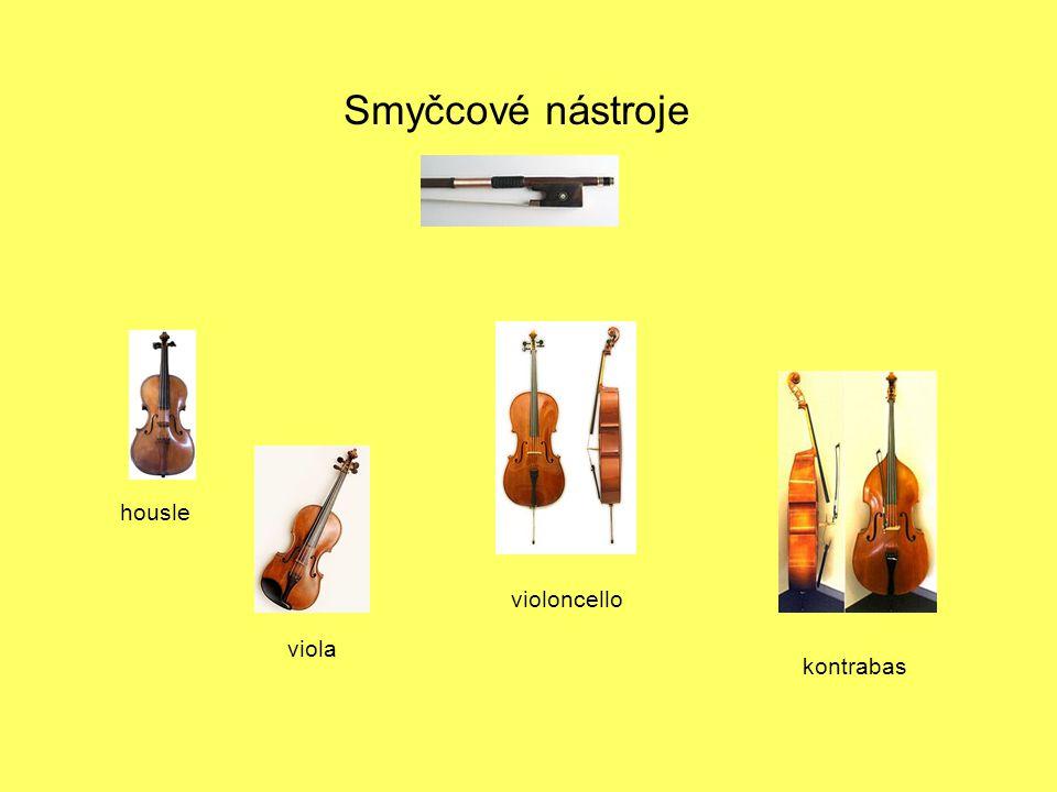 Smyčcové nástroje housle viola violoncello kontrabas