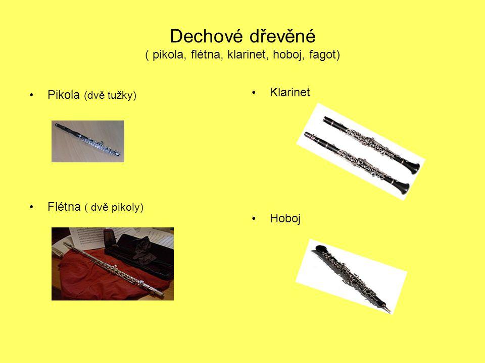 Dechové dřevěné ( pikola, flétna, klarinet, hoboj, fagot) Pikola (dvě tužky) Klarinet Flétna ( dvě pikoly) Hoboj