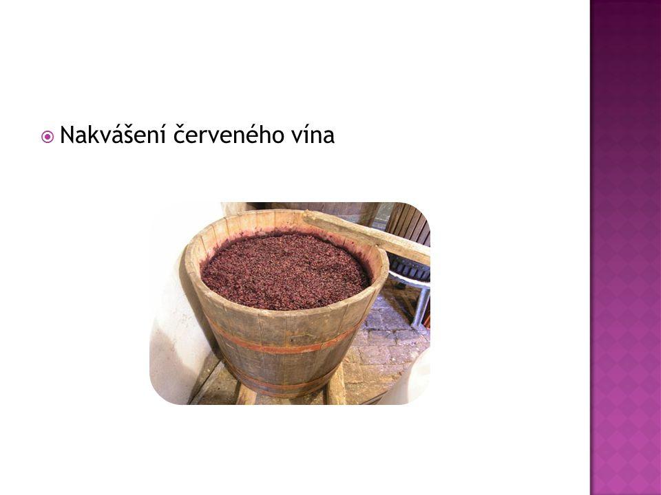  Nakvášení červeného vína
