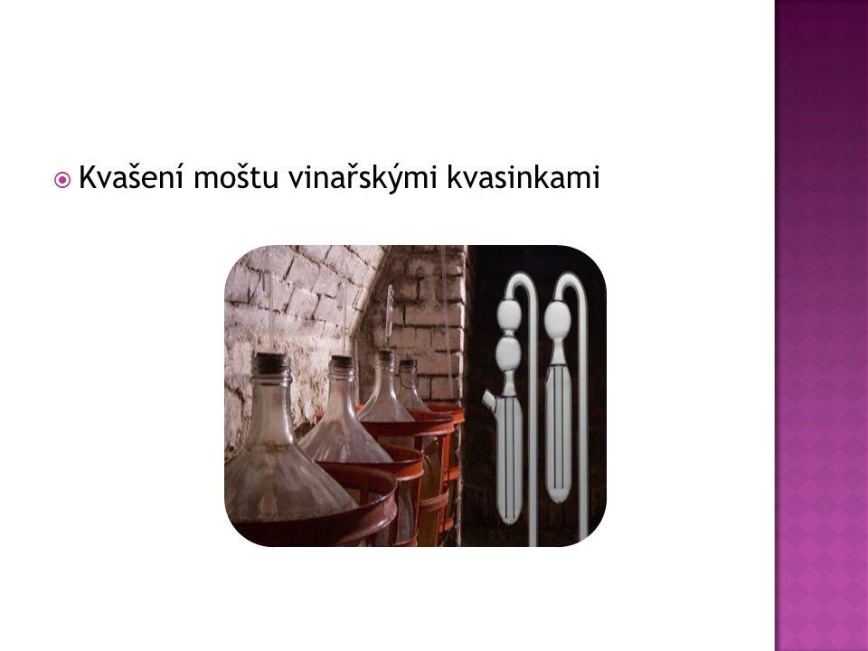  Kvašení moštu vinařskými kvasinkami