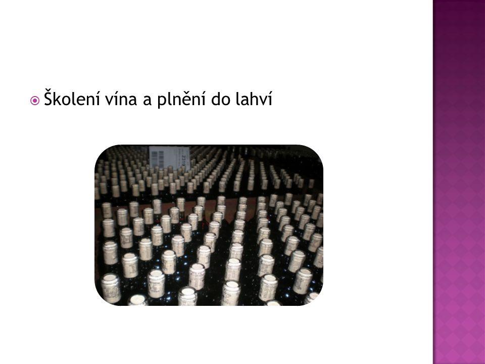  Školení vína a plnění do lahví