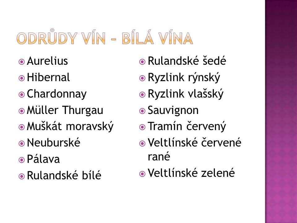  Aurelius  Hibernal  Chardonnay  Müller Thurgau  Muškát moravský  Neuburské  Pálava  Rulandské bílé  Rulandské šedé  Ryzlink rýnský  Ryzlin